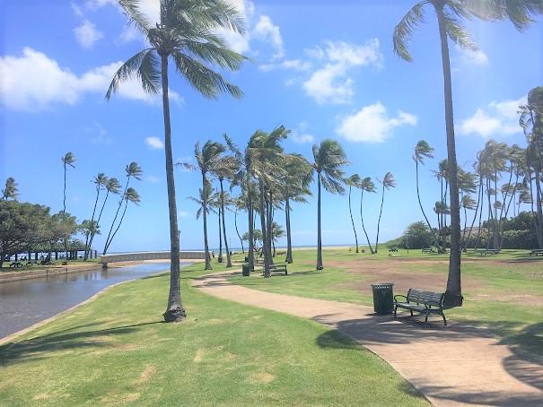 ハワイ帰国後の変化