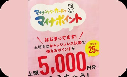 マイナポイント制度で5000円